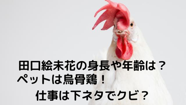 田口絵未花
